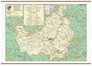 harta-judetul-cluj-sipci-plastic_1_fullsize